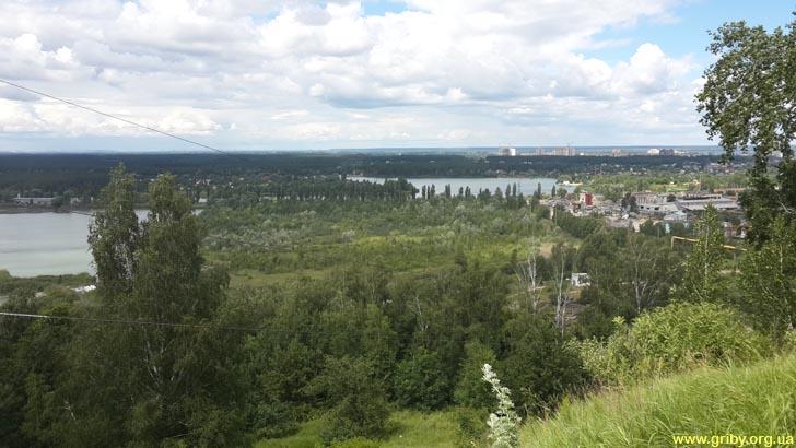 Вид с дороги на Ржищев